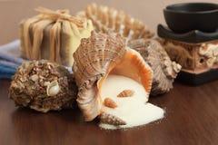 Sel dans les accessoires de bain de seashell images stock