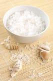 Sel de Bath et seashells photo stock