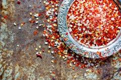 Sel de poivre de piment rouge Photo libre de droits
