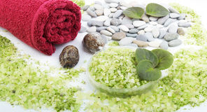 Sel et essuie-main herbeux image stock