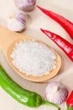 Sel, piments et ail Photo stock