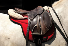 Sela a cavalo Foto de Stock Royalty Free