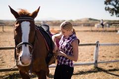 Sela da asseguração da jovem mulher no cavalo imagens de stock royalty free