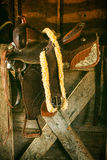 Sela ocidental Imagem de Stock Royalty Free