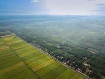 Selangor, Малайзия 15-ое ноября 2017: Вид с воздуха рисовых полей на Sungai Sireh, Kuala Selangor Стоковое Изображение