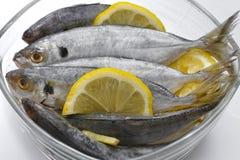 Selar kuning fish Stock Photos