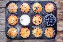 Selbst gemachte Blaubeermuffins mit Milch und Beeren Stockbilder