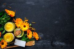 Selbst gemachte Calendula-Salbe stockfoto