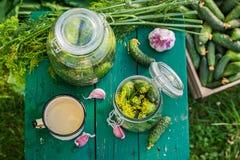 Selbst gemachte in Essig eingelegte Gurken im Garten lizenzfreie stockbilder