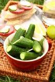 Selbst gemachte frische gesalzene Gurken und Sandwiche mit Wurst Lizenzfreie Stockfotos