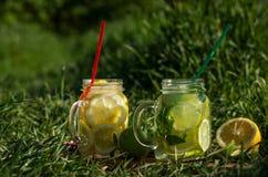 Selbst gemachte frische kalte Limonade mit Zitrone und Kalk Lizenzfreie Stockbilder