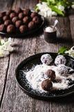 Selbst gemachte gesunde Schokoladenbälle des strengen Vegetariers, Trüffeln, Süßigkeiten besprühten Kokosraspel lizenzfreie stockfotos
