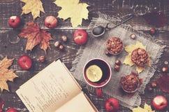 Selbst gemachte Hafermehlmuffins mit Äpfeln Lizenzfreie Stockfotos