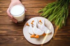 Selbst gemachte Ingwerplätzchenente formte und Glas Milch auf Holztisch mit dem Ohr des Weizens mit dem Arm des Mannes Lizenzfreie Stockfotos