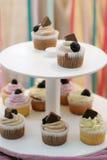 Selbst gemachte kleine Kuchen Stockbilder