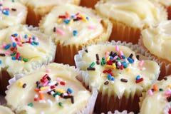 Selbst gemachte kleine Kuchen mit besprüht Stockfotografie