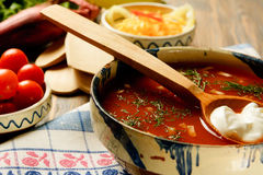 Selbst gemachte Land-Suppe Lizenzfreies Stockfoto