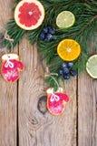 Selbst gemachte Lebkuchenplätzchen glasiert und Weihnachtsbaumaste mit Früchten lizenzfreies stockbild