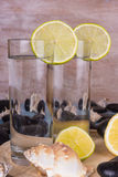 Selbst gemachte Limonade Stockfotografie
