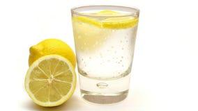 Selbst gemachte Limonade mit frischen Zitrusfrüchten Stockbild