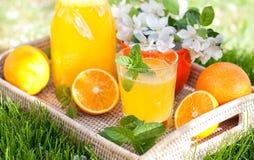 Selbst gemachte Limonade von den Orangen und von der Zitrone Stockbild