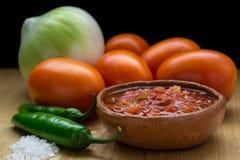 Selbst gemachte mexikanische Salsa Lizenzfreies Stockfoto