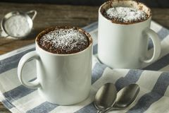 Selbst gemachte Mikrowellen-Schokoladen-Becher-Schokoladenkuchen lizenzfreies stockfoto
