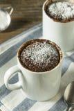 Selbst gemachte Mikrowellen-Schokoladen-Becher-Schokoladenkuchen stockbild