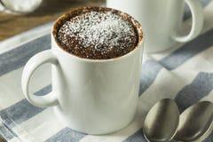 Selbst gemachte Mikrowellen-Schokoladen-Becher-Schokoladenkuchen stockfotografie