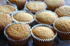 Selbst gemachte Muffins Lizenzfreies Stockbild