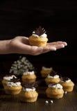 Selbst gemachte Muffins Lizenzfreie Stockfotos