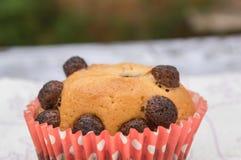 Selbst gemachte Muffins Stockbild