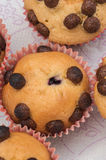 Selbst gemachte Muffins Lizenzfreie Stockfotografie