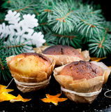 Selbst gemachte Muffins im braunen Papier Stockbilder