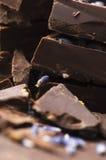Selbst gemachte Schokolade mit Lavendelblumen Lizenzfreie Stockbilder