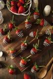 Selbst gemachte Schokolade tauchte Erdbeeren ein Lizenzfreie Stockfotos