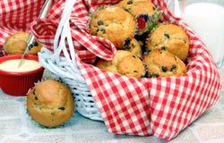 Selbst gemachte Schokoladen-Chip-Muffins im Korb Lizenzfreie Stockfotos