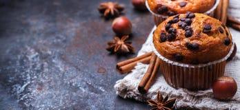 Selbst gemachte Schokoladensplittermuffins zum Frühstück Stockbild