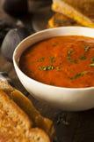 Selbst gemachte Tomaten-Suppe mit gegrilltem Käse Lizenzfreie Stockfotos