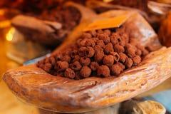 Selbst gemachte Trüffelsüßigkeiten des strengen Vegetariers mit Kakao lizenzfreies stockbild