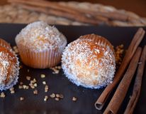 Selbst gemachte Vanille-Muffins mit Kokosraspel Stockbilder