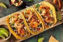 Selbst gemachte würzige Garnelen-Tacos Stockfoto