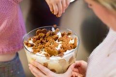 Selbst gemachte Weihnachtslebkuchen-Vanillepuddingkleinigkeit r Stockbild