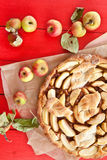 Selbst gemachter Apfelkuchen Stockbild