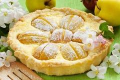 Selbst gemachter Apfelkuchen, Apfelfrucht und Blütenbaumast lizenzfreie stockfotos