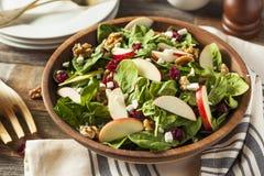 Selbst gemachter Autumn Apple Walnut Spinach Salad Stockfotografie