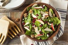Selbst gemachter Autumn Apple Walnut Spinach Salad Lizenzfreie Stockfotografie