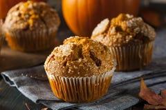 Selbst gemachter Autumn Pumpkin Muffin lizenzfreies stockbild