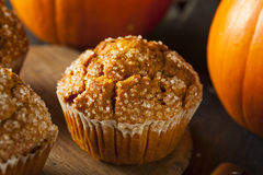 Selbst gemachter Autumn Pumpkin Muffin stockbilder