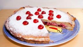 Selbst gemachter bakewell Pudding Stockbild